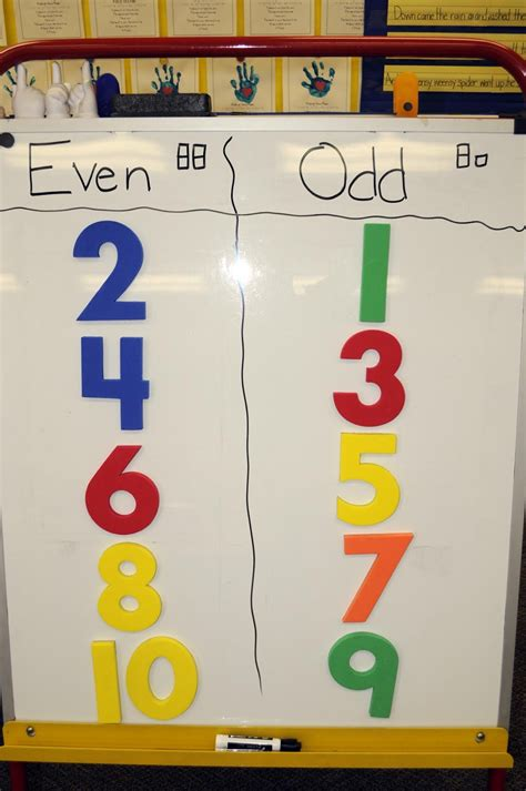 even numbers even numbers books mrs ricca s kindergarten even numbers