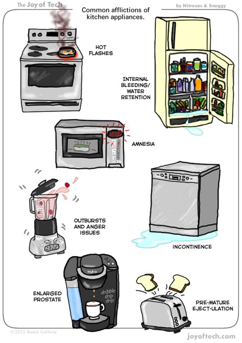 Common Kitchen Appliances | common afflictions of kitchen appliances