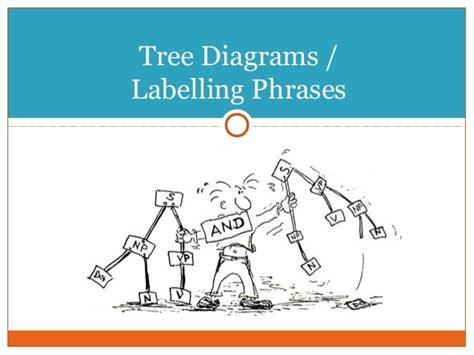 labeled tree diagram labeled tree diagram images