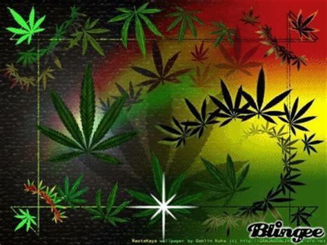 imagenes weed love weed marijuana gif find share on giphy