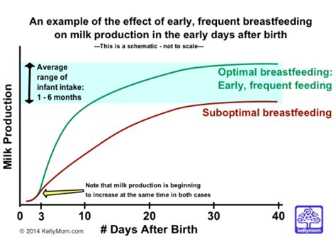 How To Increase Breast Milk Production After C Section by When Will Milk Come In Kellymom
