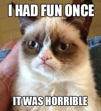 Popular Cat Memes - skyrocket radio it s not too late to start using memes