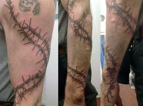 rose thorn bush tattoos 26 best barbed wire tattoos images on barbed
