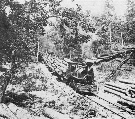 scfc history of forest industry ozarkswatch
