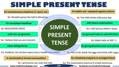 make the patterns of simple present tense simple present tense english grammar english study page