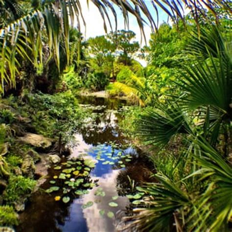 west palm botanical garden mounts botanical garden 132 photos 25 reviews