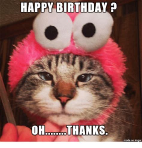 Cat Meme Happy Birthday - best happy birthday cat meme