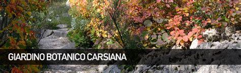 giardino botanico carsiana giardino botanico carsiana orto botanico d italia