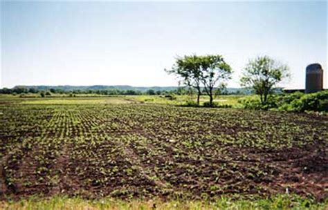 Can Soybeans Be Planted To Detox Land by Mpr Early Weather Dening Farmers Hopes For Crops
