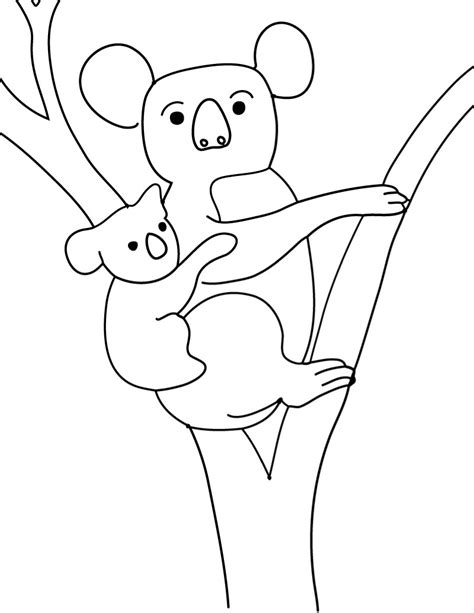 coloring page koala printable koala coloring pages coloring me