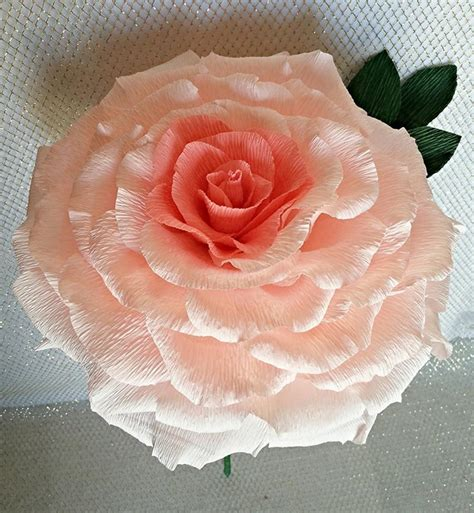 Buy large paper roses   An Essay for Introducing a