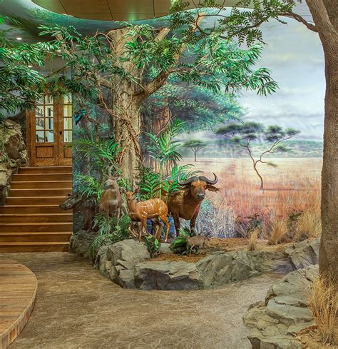 wildlife wall mural painted mural wildlife trophy room wall murals