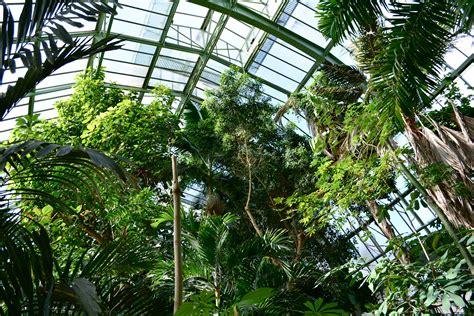 serre jardin des plantes grandes serres du jardin des plantes evous
