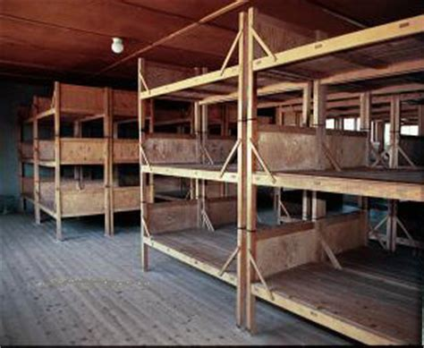 Concentration C Bunk Beds Interior Of Barracks In Dachau Concentration C