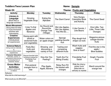 provider sle lesson plan template school pinterest