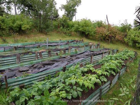 mysecretgarden sprucing up a vegetable garden 3