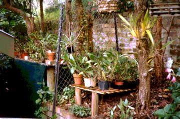 Backyard Design Ideas orchidsafari greenhouse tours