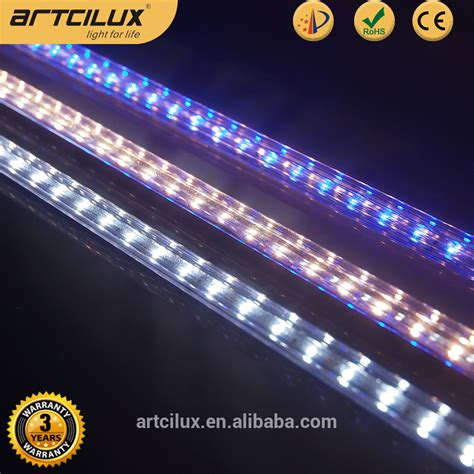 Led Display Lighting by White Rgb Both Led Lighting For Display Cases For Jewerly