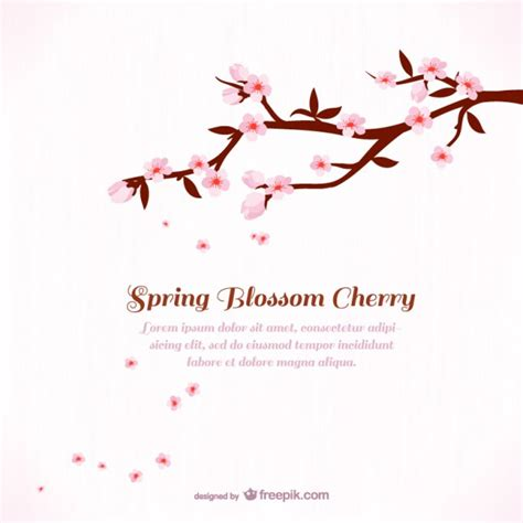 cherry blossom template background template with cherry blossom vector free