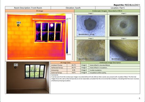 thermal imaging report template using the combination of thermography and an endoscope to