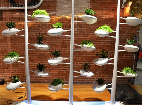 indoor hydroponic wall garden danielle trofe s live screen is a self watering wall built
