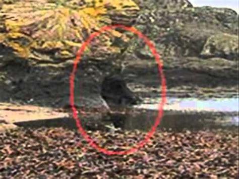 imagenes reales e insolitas espiritus fantasmas ghost reales paranormales