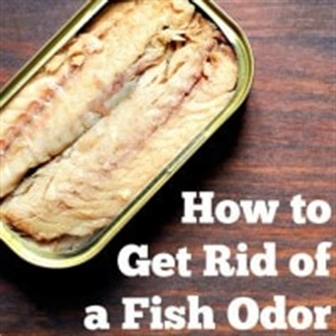 how to get rid of smell in room how to get rid of fish odor in the kitchen