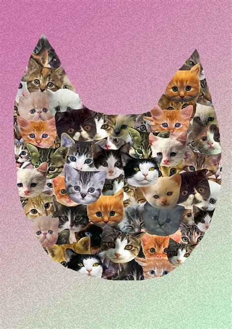 cat wallpaper collage cat collage cat collage ak jpg cats pinterest