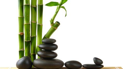 imagenes de piedras zen detalles zen bamb 250 con piedras