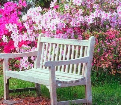 flower garden bench garden wedding ideas wedding flowers the old farmer s