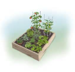 Easy 4 X 4 Summer Garden Bonnie Plants Easy Square Foot Garden Plan