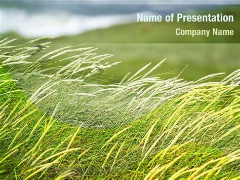 grass powerpoint templates grass powerpoint backgrounds