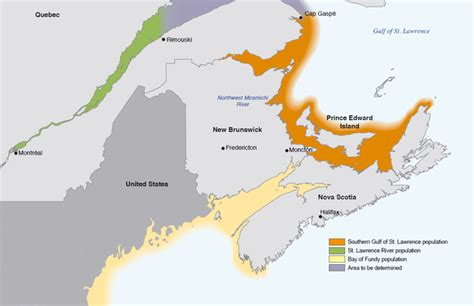 gulf of st canada map species at risk registry striped bass southern