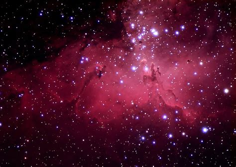 pink eagles wallpaper pink galaxies tumblr page 2 pics about space