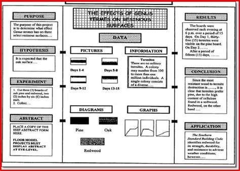 science project template science fair project board template project