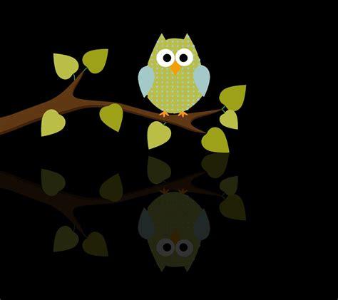 Cardinal Shoes Maximus 6 Coklat 92 4k uhd wallpaper cell phone owl suggestion gt gt gt best