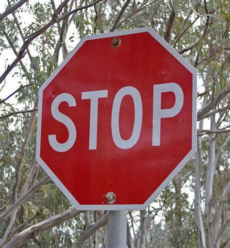 the stop stop sign
