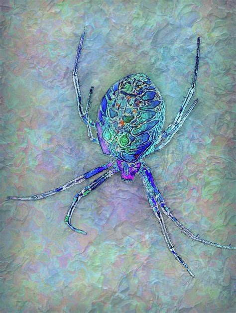 colorful spider colorful spider painting by zulli