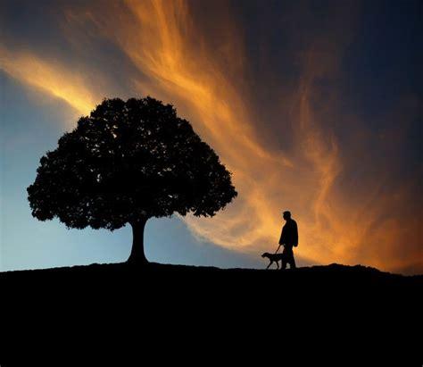 imagenes de paisajes que transmiten paz el amor est 225 en el aire transmitiendo paz