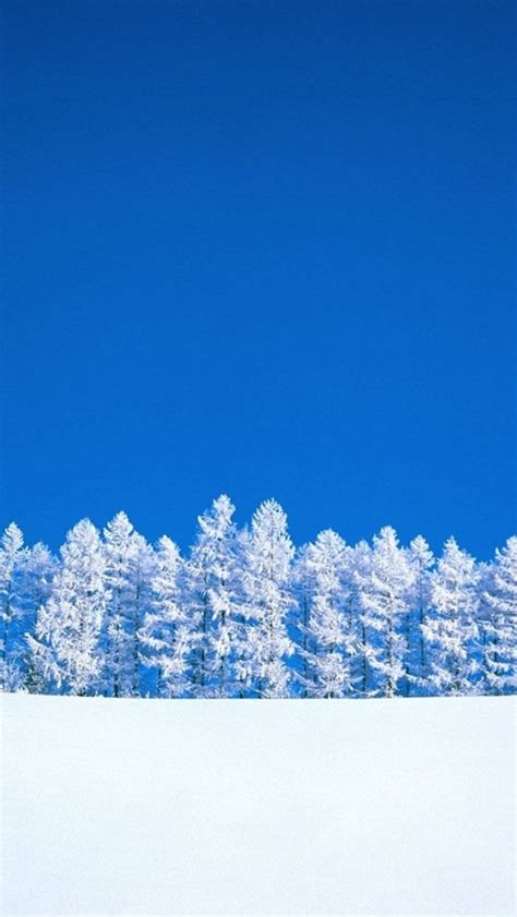 wallpaper for iphone 5 winter white snow tree iphone 5 wallpapers top iphone 5