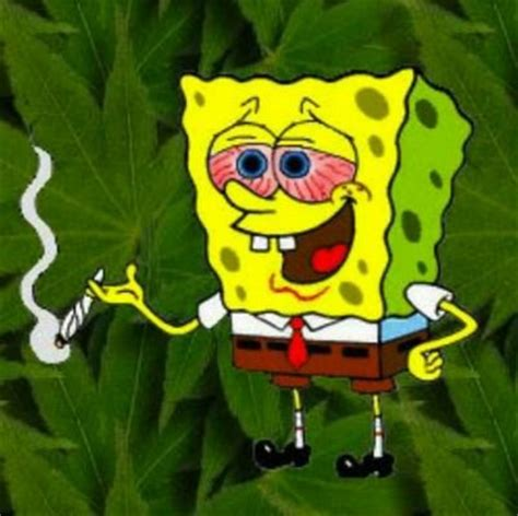 Spongebob Weed Memes - stoner spongebob on twitter quot rt to pass this j http t