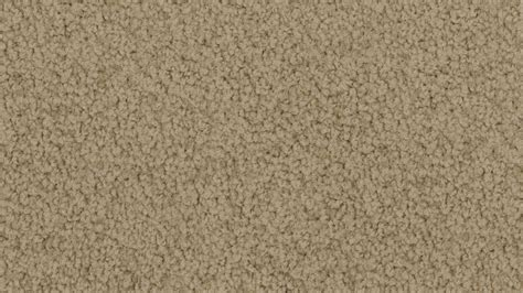 carpet   home bayside twist godfrey hirst carpets
