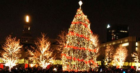 are you ready for canada s biggest christmas tree toronto