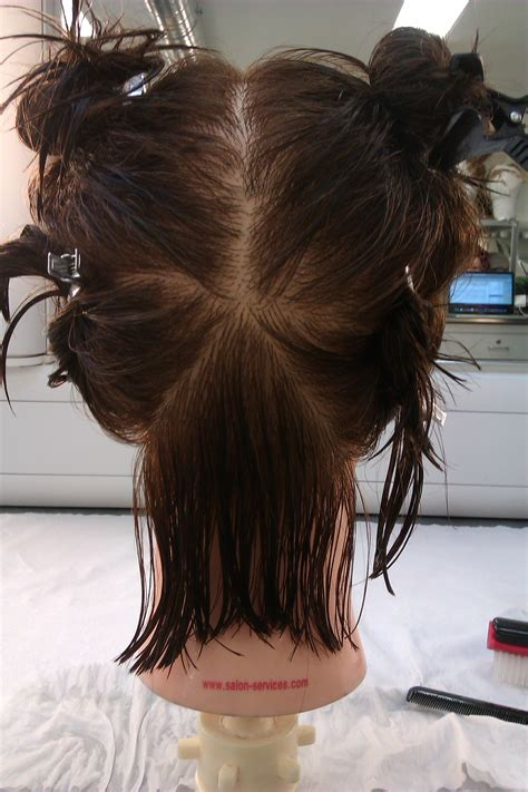 sectioning hair hair sectioning 28 images step by step to cut hair