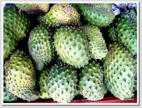 dapur bujang khasiat buah durian belanda