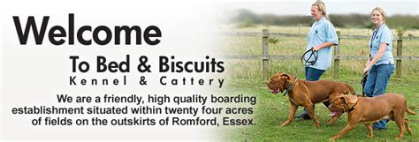 bed and biscuits boarding kennel and cattery romford essex bed and biscuits