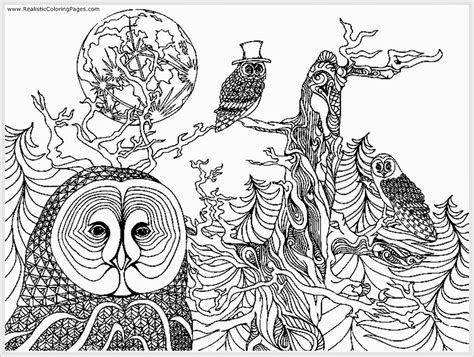 coloring pages for adults owls icolor quot owls quot on owl coloring pages owl and