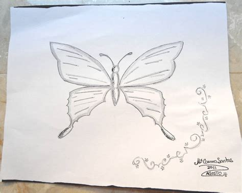 imagenes de mariposas a lapiz trazos sueltos quot borboleta quot mariposa