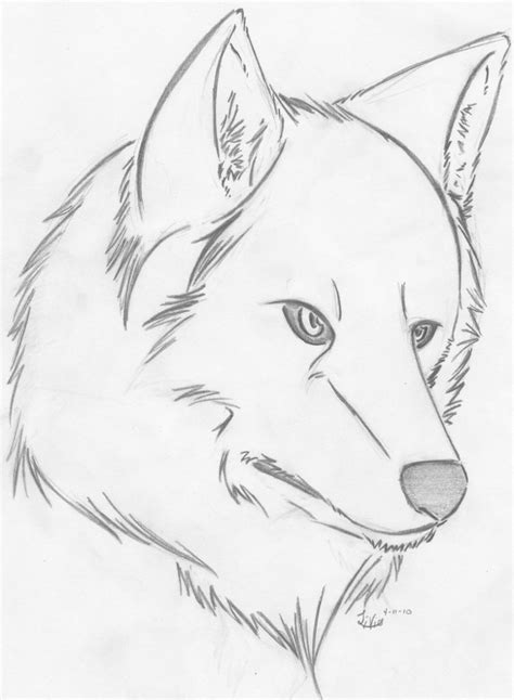Sketches L by Drawings Of Wolves Bestofpicture Images Easy Drawings Of