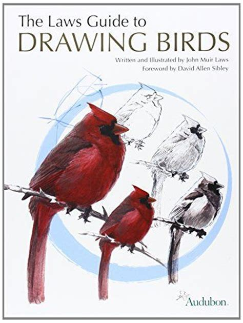 drawing birds john muir and law on